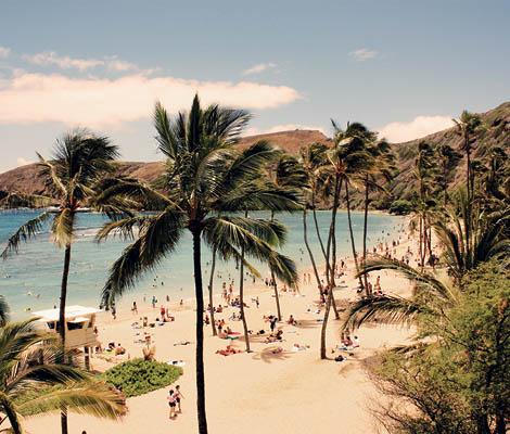 Curs engleza Honolulu